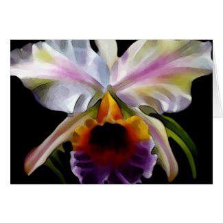 Colorful Floral Greeting Cards