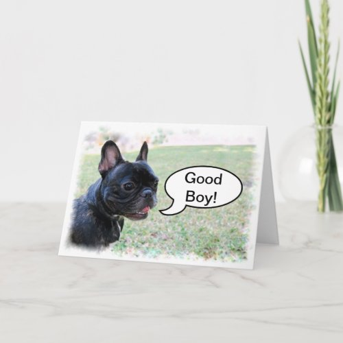 Congratulations Good Boy French Bulldog Card card