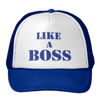 Corporate Boss Mesh Hat