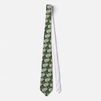 CricketDiane Southern Magnolias tie