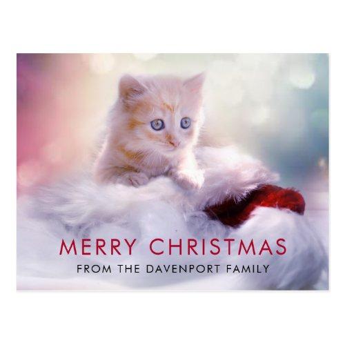 Cute Christmas Kitten Holiday Postcard