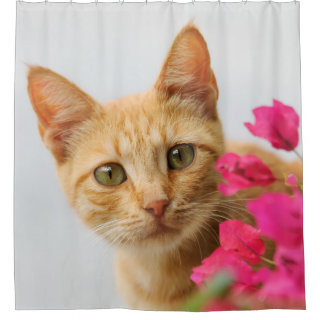 Cute Ginger Kitten Portrait, Tub Shower Curtain