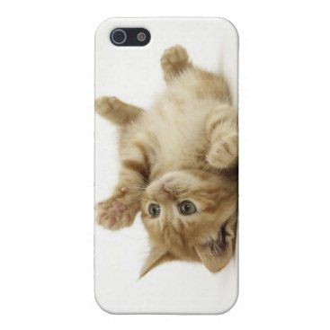 Cute Kitten iPhone SE/5/5s Cover