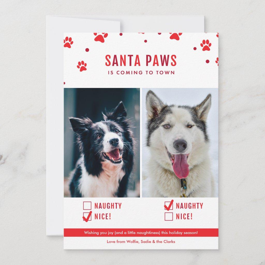 Cute Naughty or Nice Two Dog Christmas Photo Holiday Card