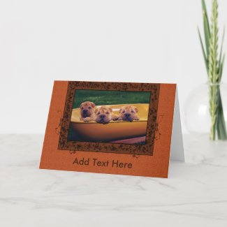 Cute Puppies Greetings card