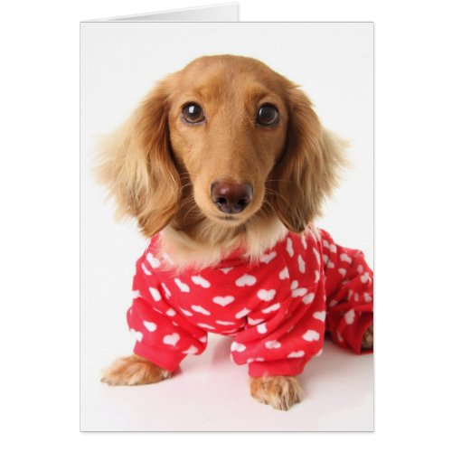 Dachshund Valentine's Outfit Greeting Card