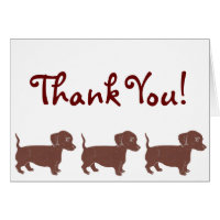Dachshunds Thank You Card