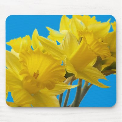 Your participation in Daffodil Days will support the American Cancer