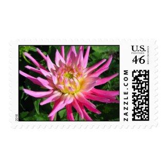 Dahlia flower - Postage