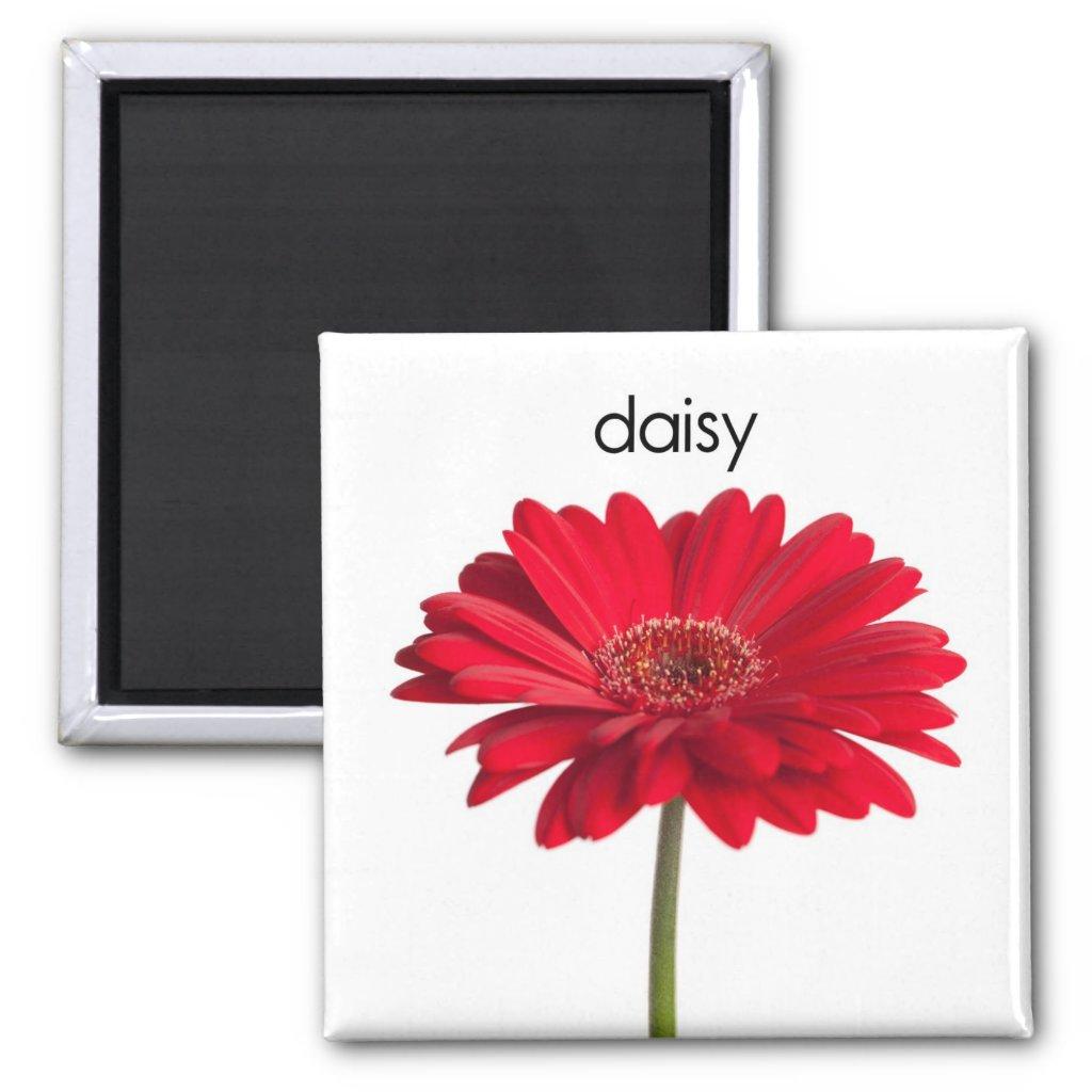 Daisy Refrigerator Magnet