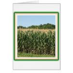 Delaware Corn cards