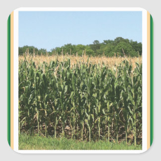 Delaware Corn Stickers