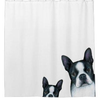 Dog 128 Boston Terrier Shower Curtain