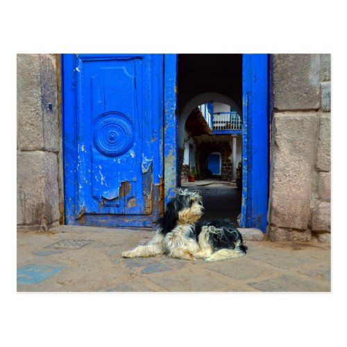Dog Waiting in Front Of Blue Door, Cusco, Peru Post Card