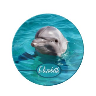 Dolphin in Blue Water Photo Plate