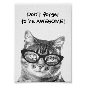 Don't forget to be awesome quote cat poster