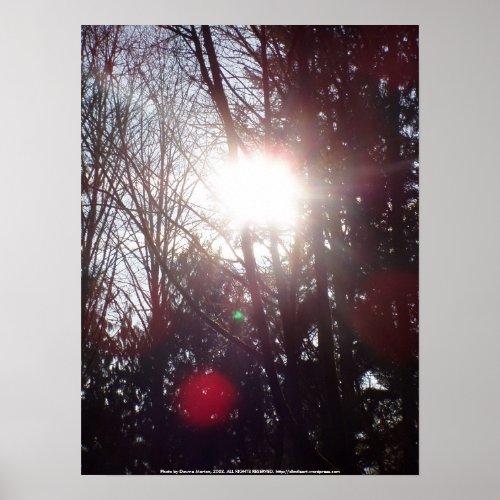 Early Morning Sun Rays #19 print