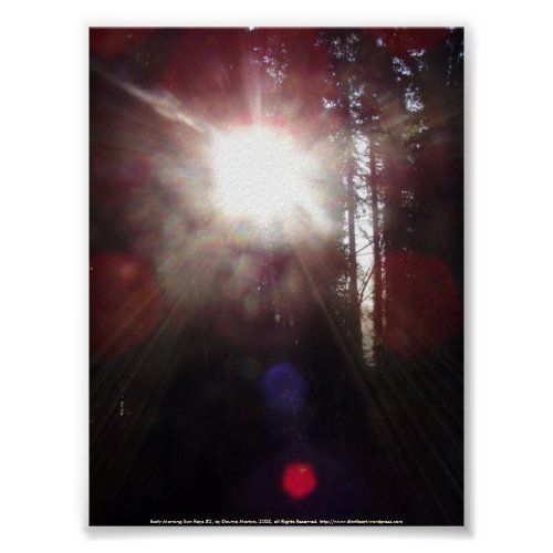 Early Morning Sun Rays #2 print