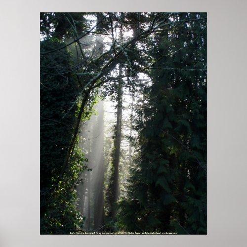 Early Morning Sunrays # 7 print