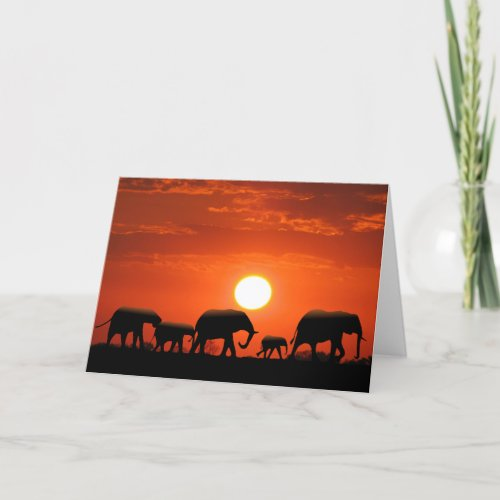 Elephant family card