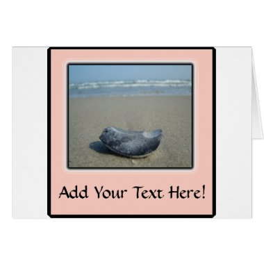 Emerald Isle Shell Closeup cards