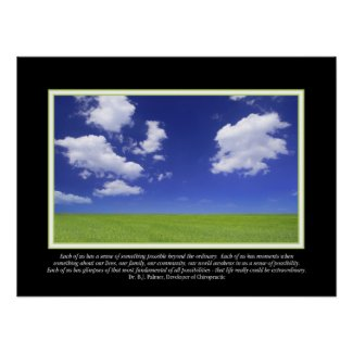Extraordinary Life Palmer Quote Poster print