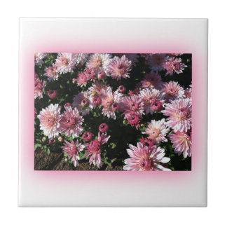 Fall Mums At Sunset Ceramic Tile