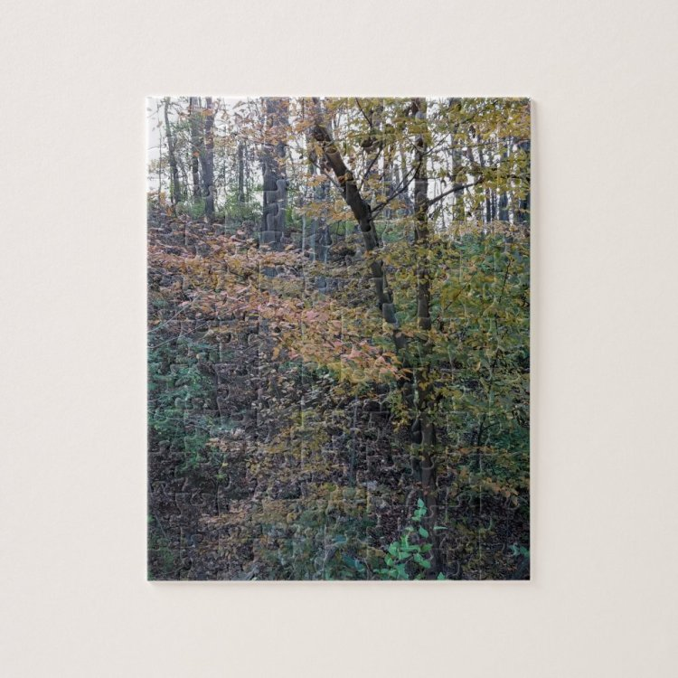 Fall - Puzzle