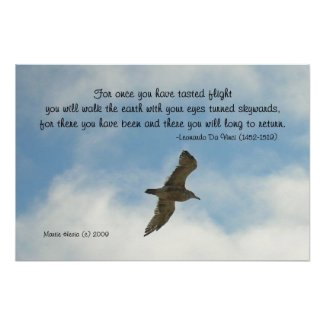 Famous Words: Flight - Seagull - Poster