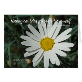 Famous Words: Peace - White Daisy Card Series (7) card