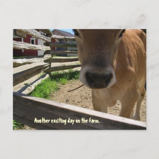 Farm Life postcard