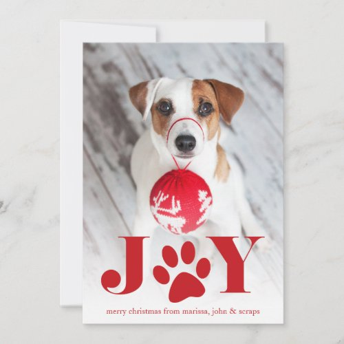 Festive Paws | Pet Photo Holiday Card