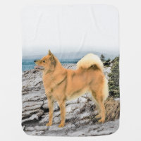 Finnish Spitz at the Seashore Baby Blanket