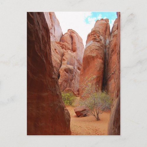 Fins, Arches National Park, Utah, Postcard postcard