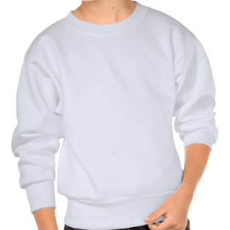 Florida Hibiscus Pink & Blue Pull Over Sweatshirts