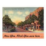 Florida, Magnolia Ave. Eustis Postcard