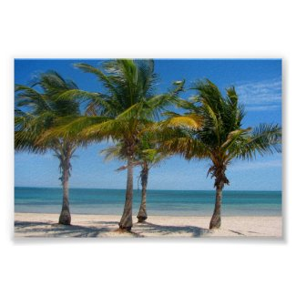 Florida palm trees print poster beach