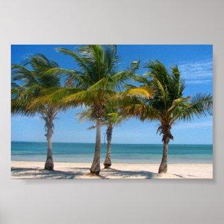Florida palm trees print poster beach