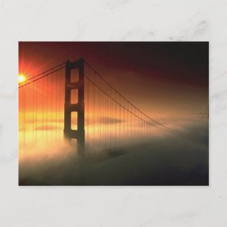 Fog Shrouded Golden Gate Postcard