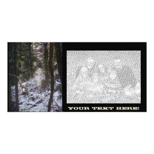 Forest Sun Rays in the Snow #24 photocard