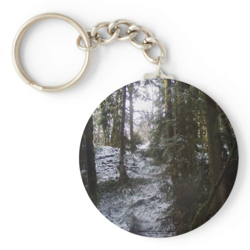 Forest Sun Rays in the Snow #53 keychain
