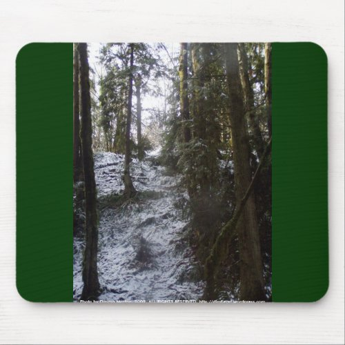 Forest Sun Rays in the Snow #53 mousepad