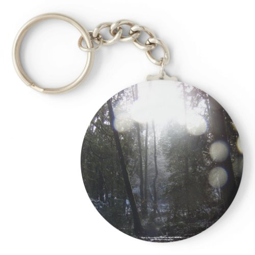 Forest Sun Rays in the Snow #64 keychain