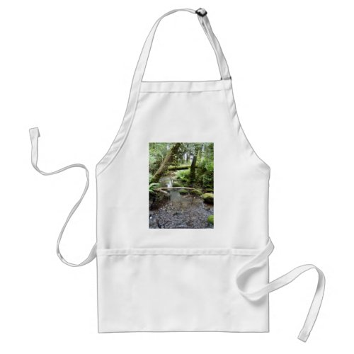 Fox Creek, Rainier, Oregon apron
