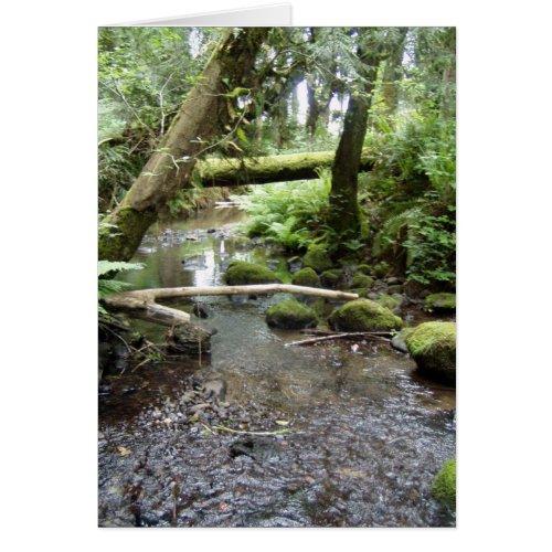 Fox Creek, Rainier, Oregon card