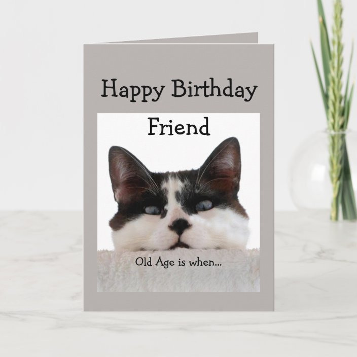 Happy Birthday Humor Cat Thinks 45 Is Old Card 1525196