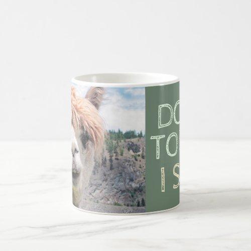 Funny Alpaca Llama Don't Touch I Spit Coffee Mug