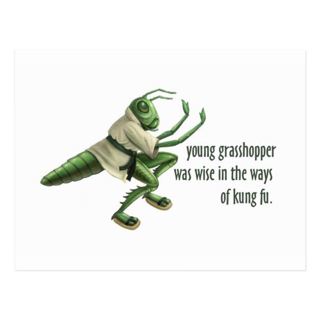 Funny Kung Fu Grasshopper Postcard