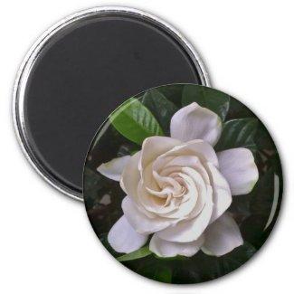 Gardenia 2 Inch Round Magnet