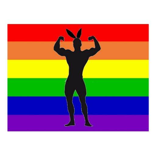 Gay gym bunny
